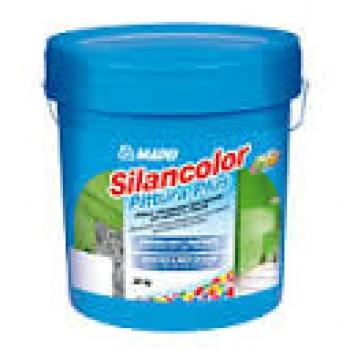 Silancolor Paint Plus (Силанколор Пейнт Плюс)
