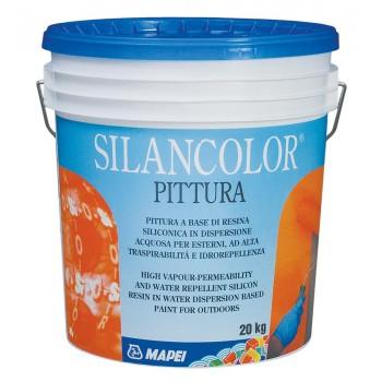 Silancolor Paint (Силанколор Пейнт)